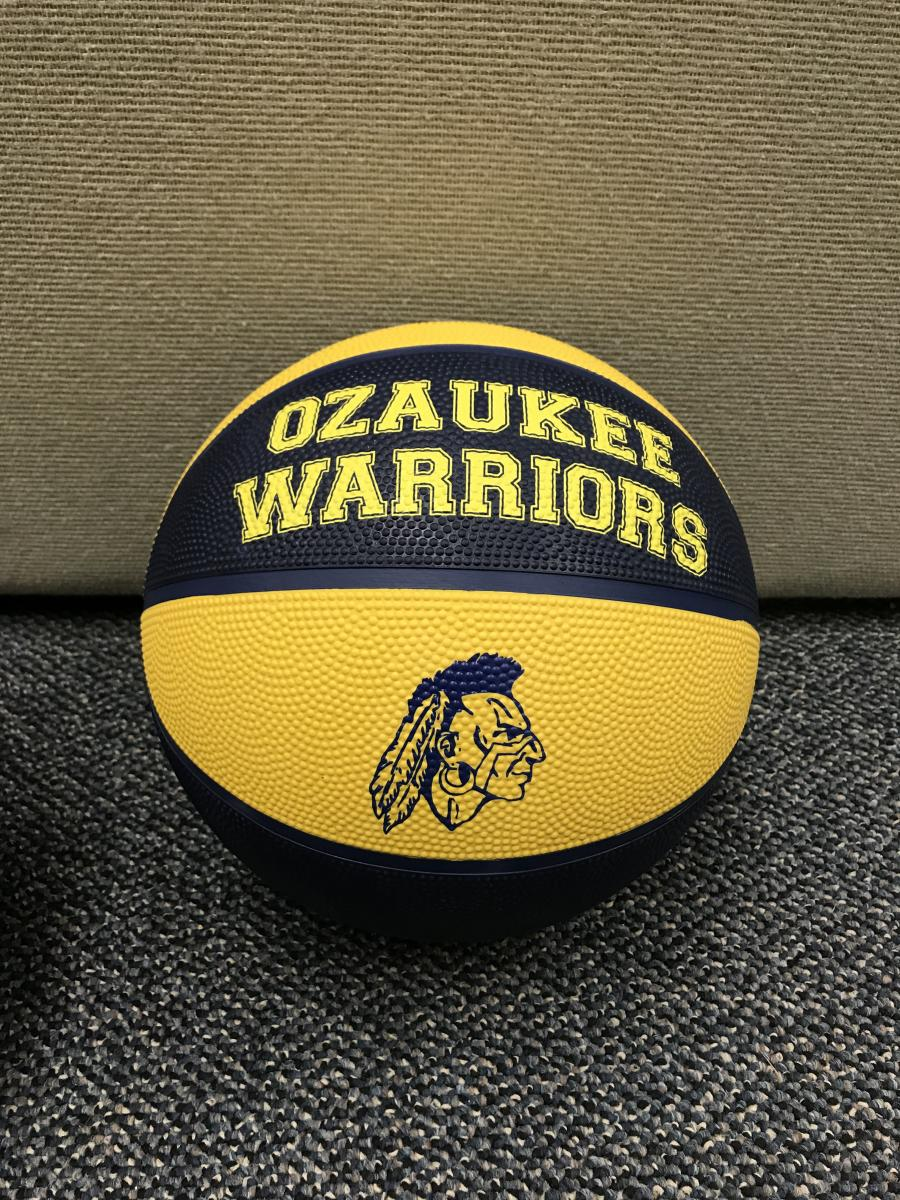 Warrior Basketballs for Sale