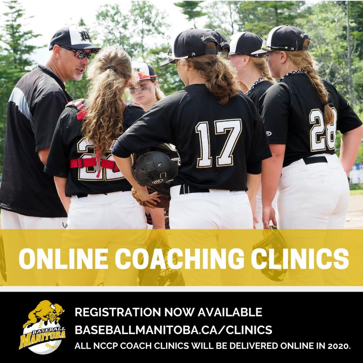 Baseball MB Coaching Clinics now ONLINE for 2020